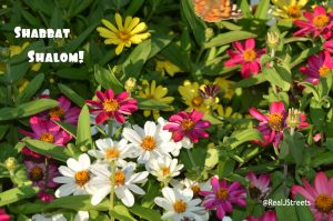 Shabbat shalom with flowers