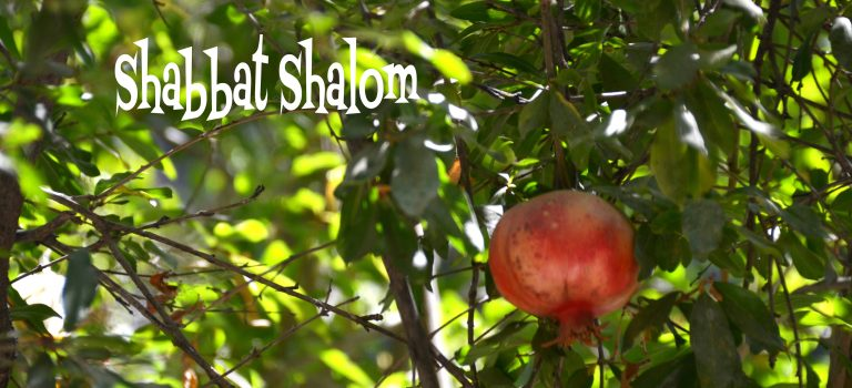 Shabbat Shalom – Let it Stay Calm
