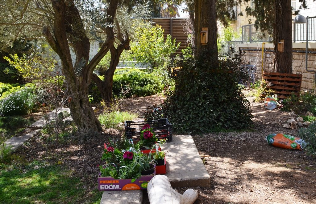 Children's corner garden at Beit Hanasi
