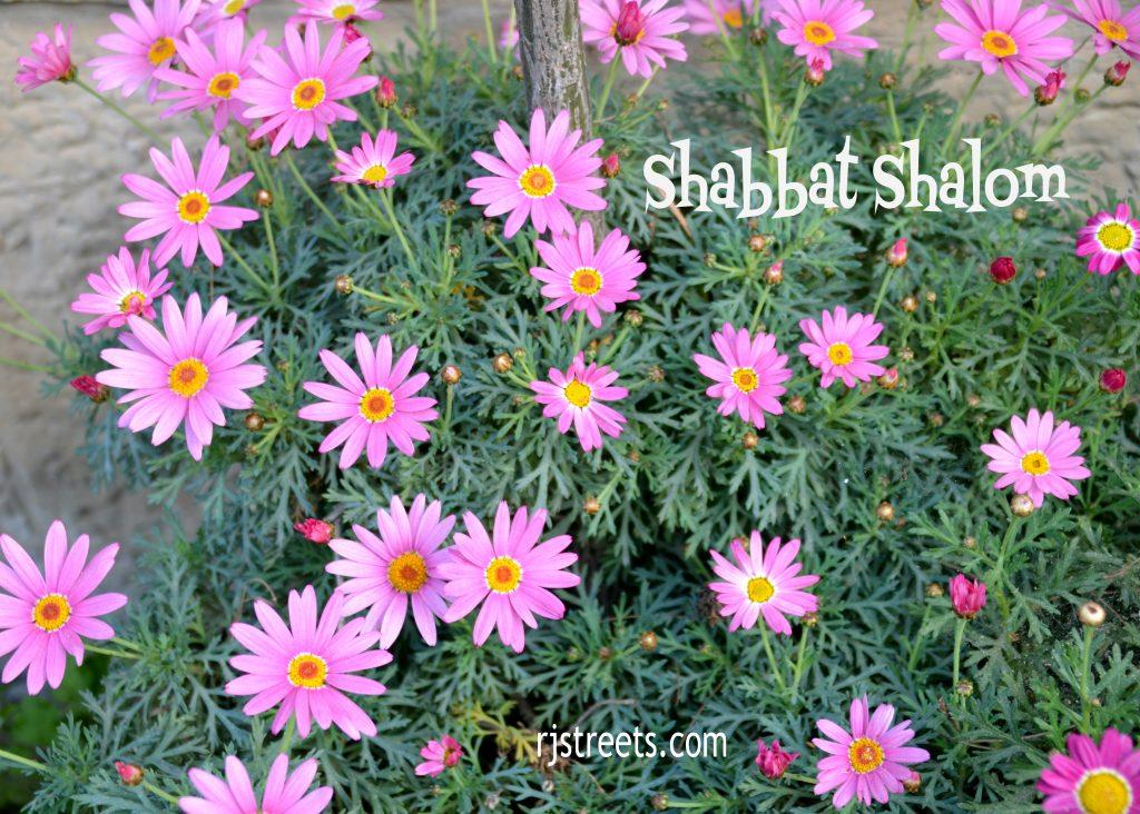 Flowers shabbat shalom erev pesach