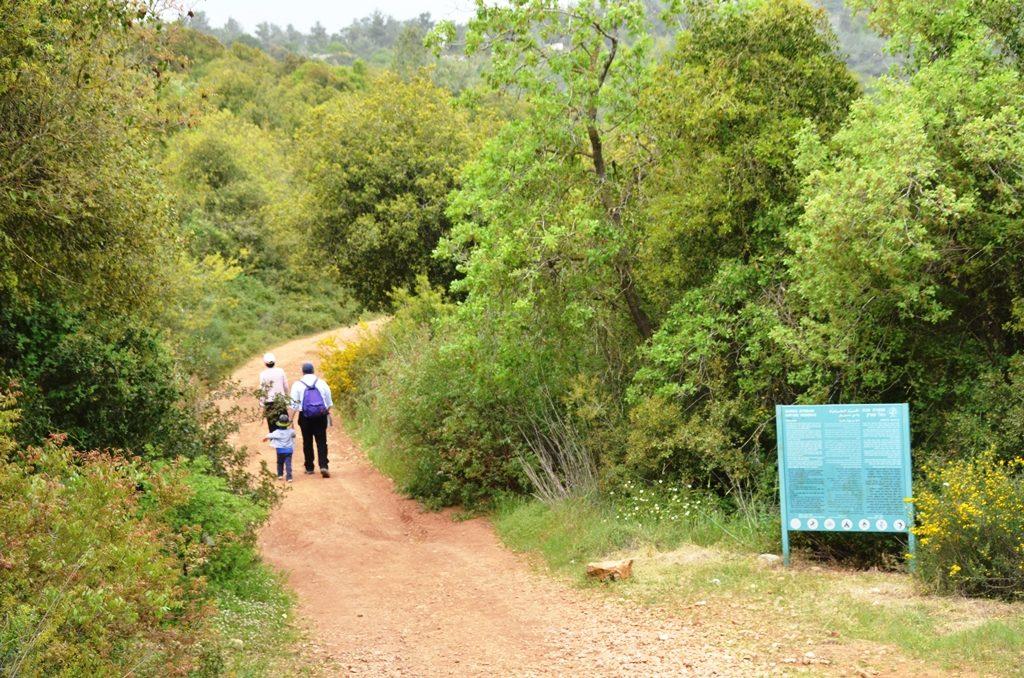 Israeli hiking trail Nahal Katlav
