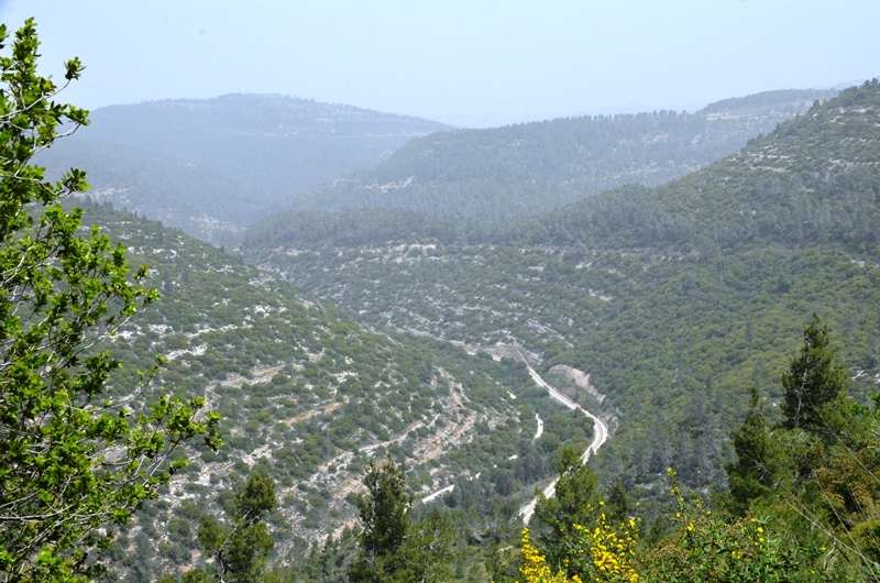 View Jerusalem Hills
