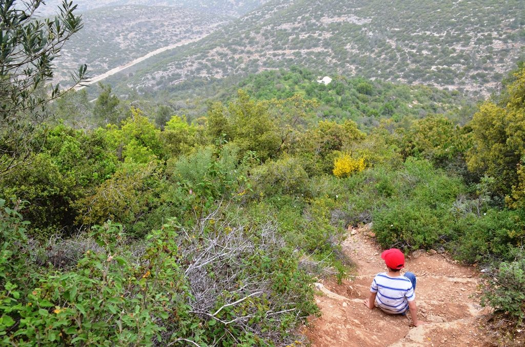 Israel hiking trail in Judean mountains