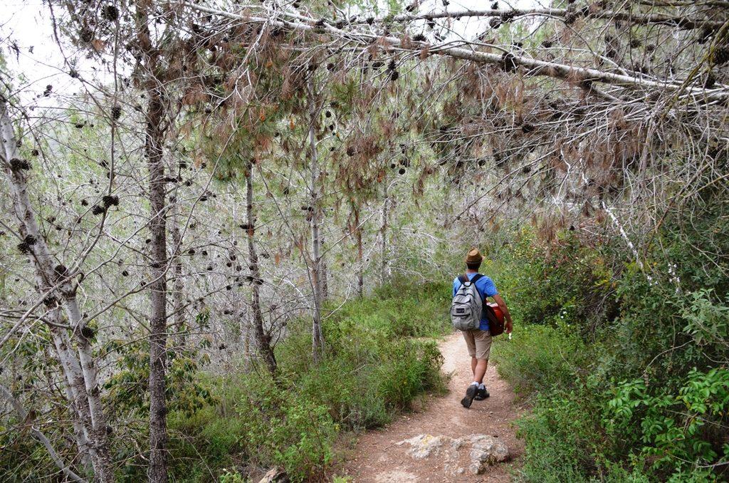 Israel nature path hiking trail