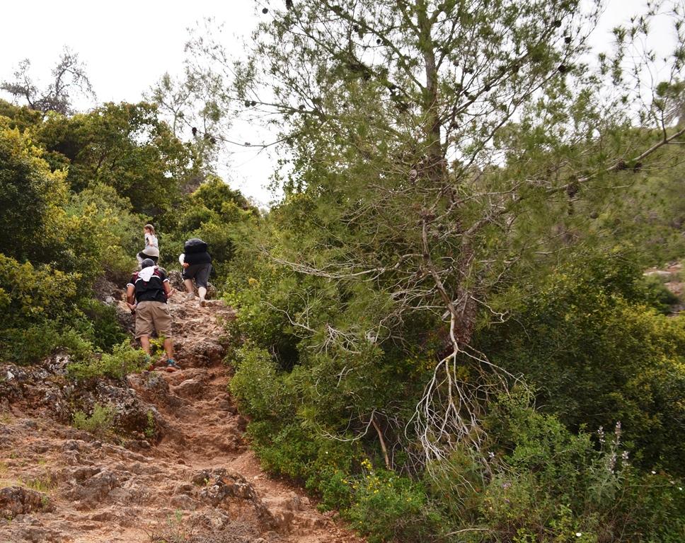 Hiking trail Israel