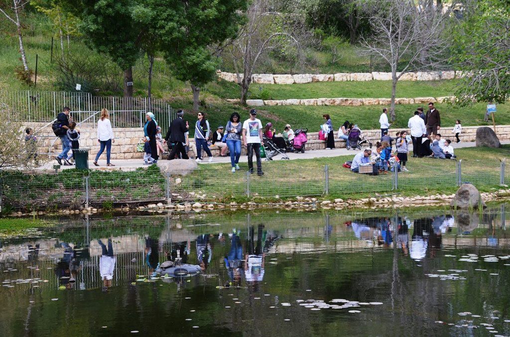 people reflected in pond