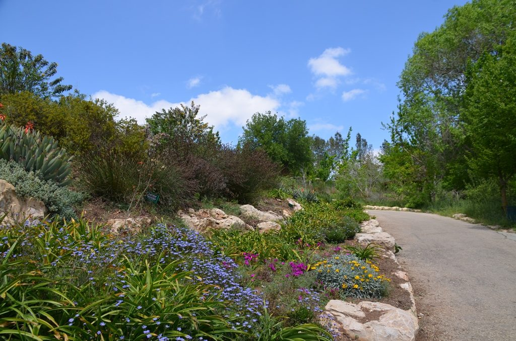 Botanical Garden on Pesach