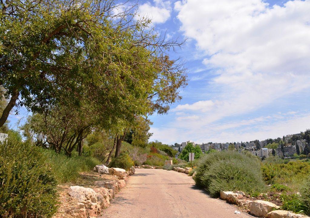 bath in garden in Jerusalem Israel