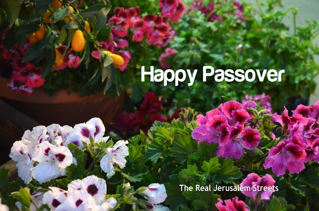 Pesach sign Happy Passover