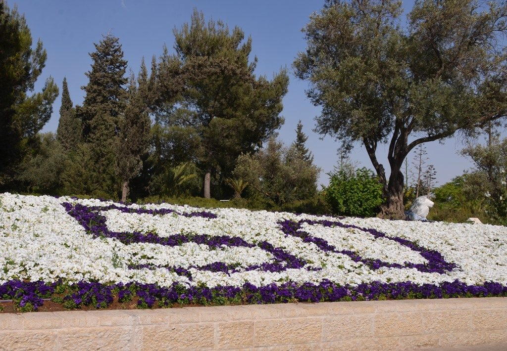 Yom Yerushalayim 50 years in flowers near Windmill