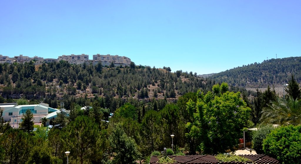 Hills around Jerusalem, Israel near zoo