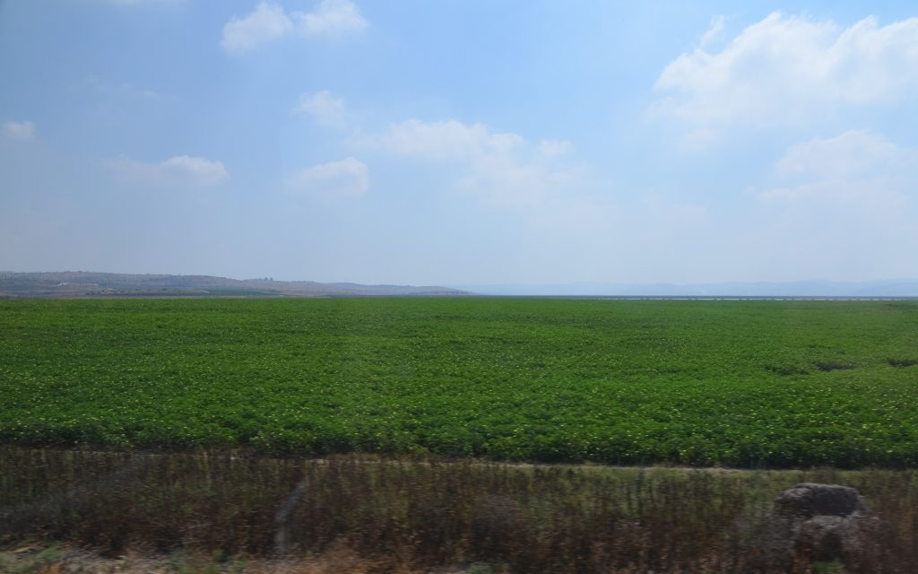 Israel outside of Jerusalem, flat and green