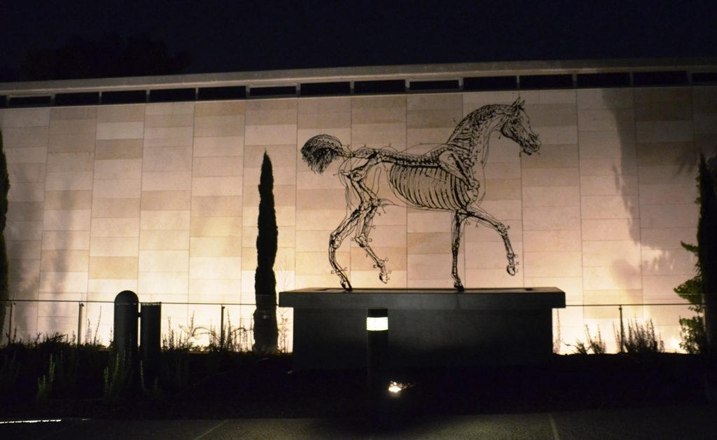 Night time view at Israel Museum
