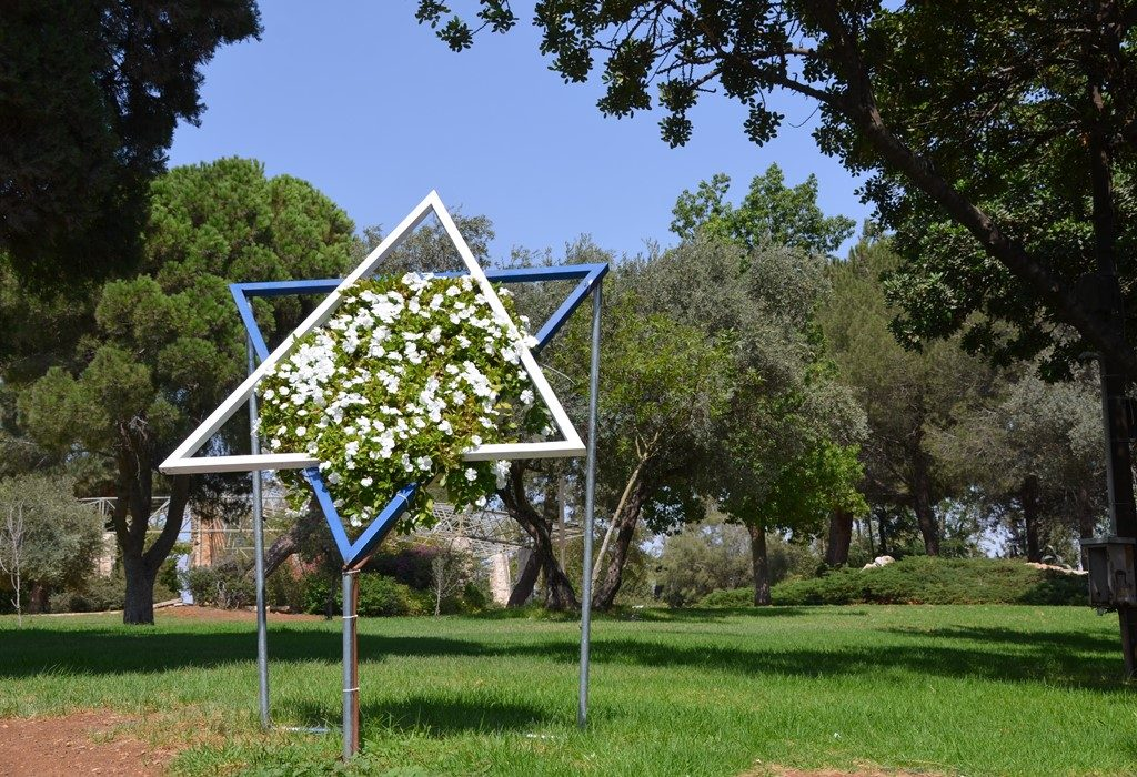 Flowers in shape of Jewish star in Bloomfield Park