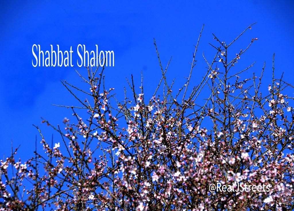 Tu B'Shvat, Tu Beshevat Shabbat shalom poster