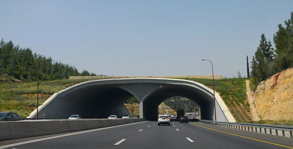 Route One Jerusalem, Israel bridge for animals to cross highway