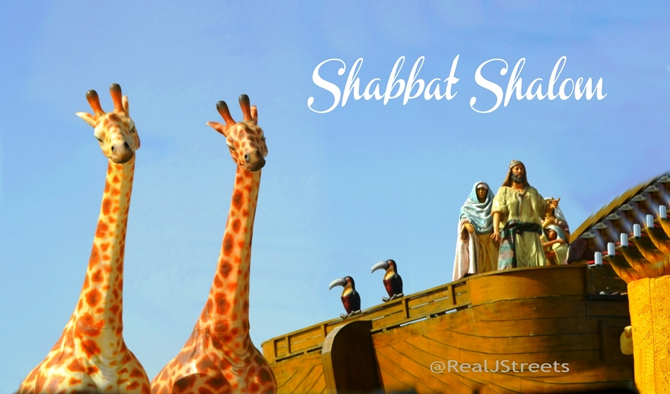 Cinema City Noah Ark for Shabat shalom