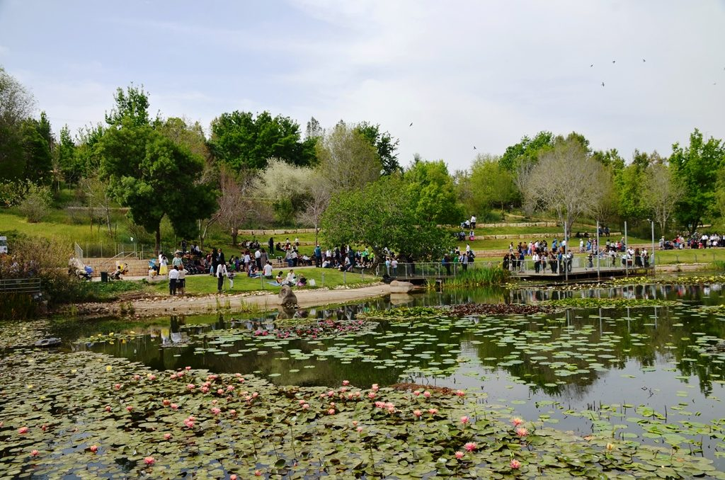 Botanical Gardens Jerusalem on Pesach