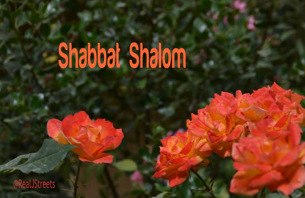 Shbbat Shalom roses on photo message