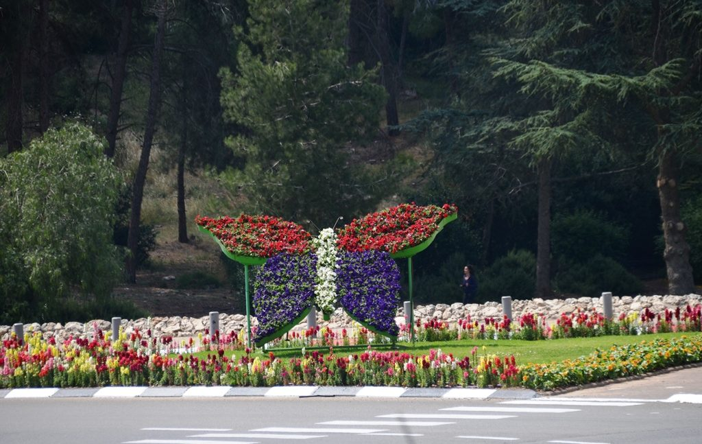 Flowers at Jerusalem intersection in butterfly frame