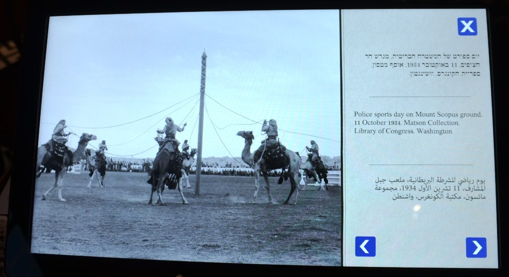 Sports day in Jerusalem with men on camels old photo