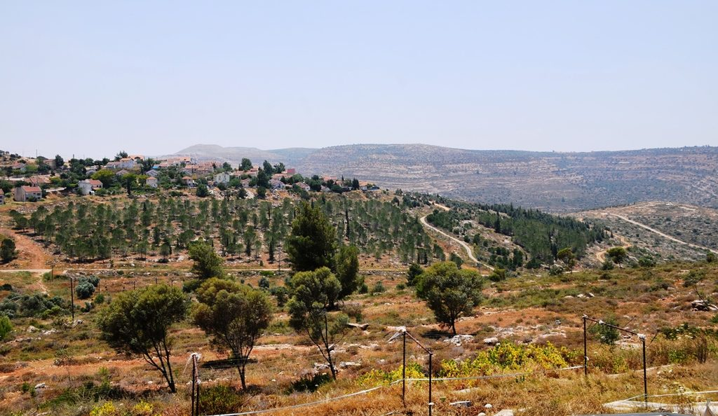 Itamar view from Zimerman Farms.