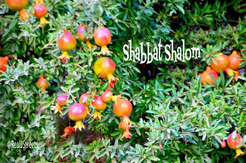 Pomegranates on Shabbat shalom poster