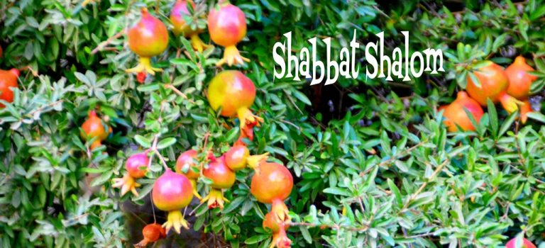 Shabbat Shalom and Shana Tova