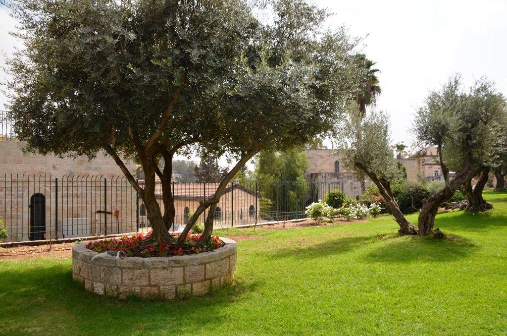 Yemin Moshe garden