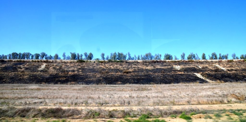 Damage from fire balloons and kites along highway in southern Israel