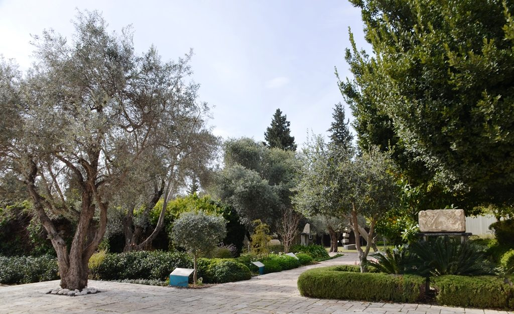 Jerusalem House of israeli President back garden