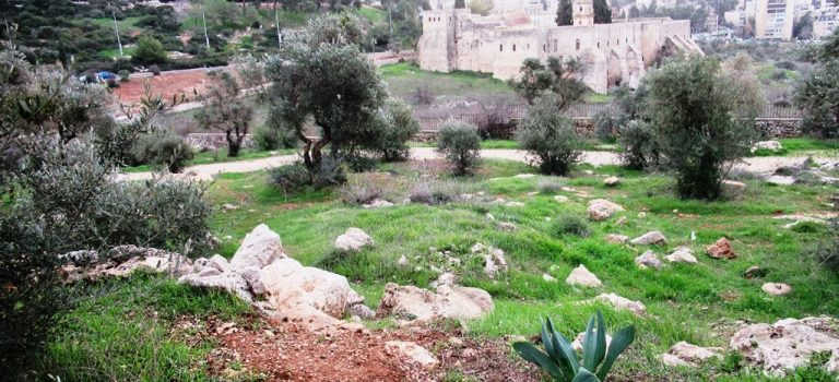 3 Suggestions to Enjoy Jerusalem in Stormy Weather