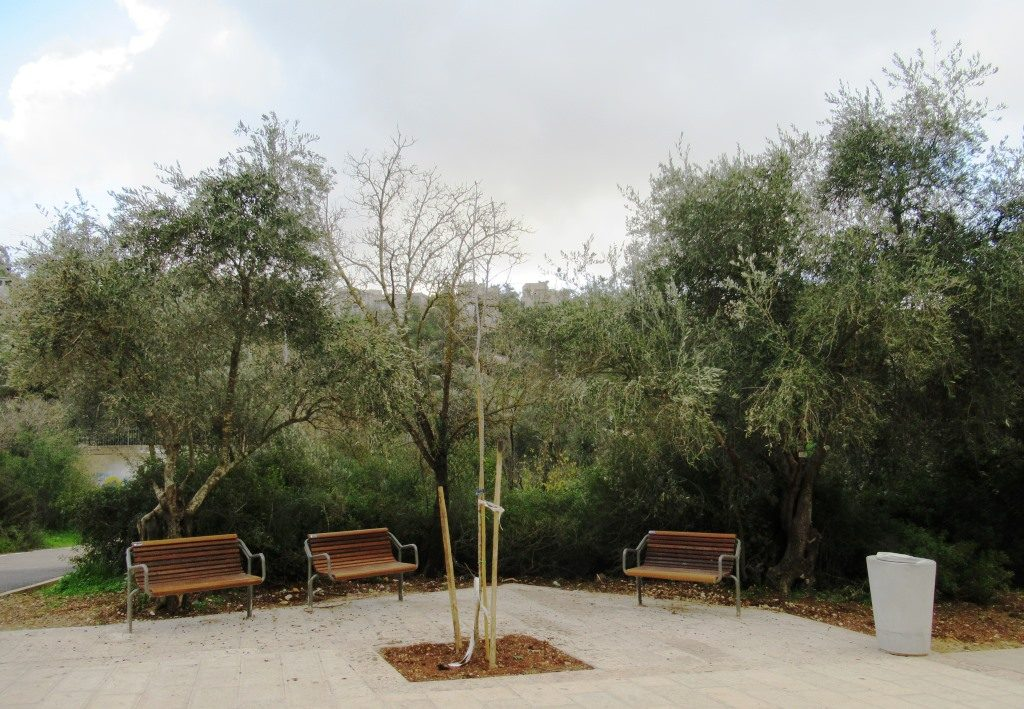 New benches in Valley of Cross bike path