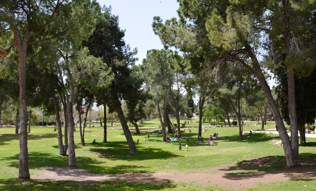 Spring in Jerusalem with children playing in park