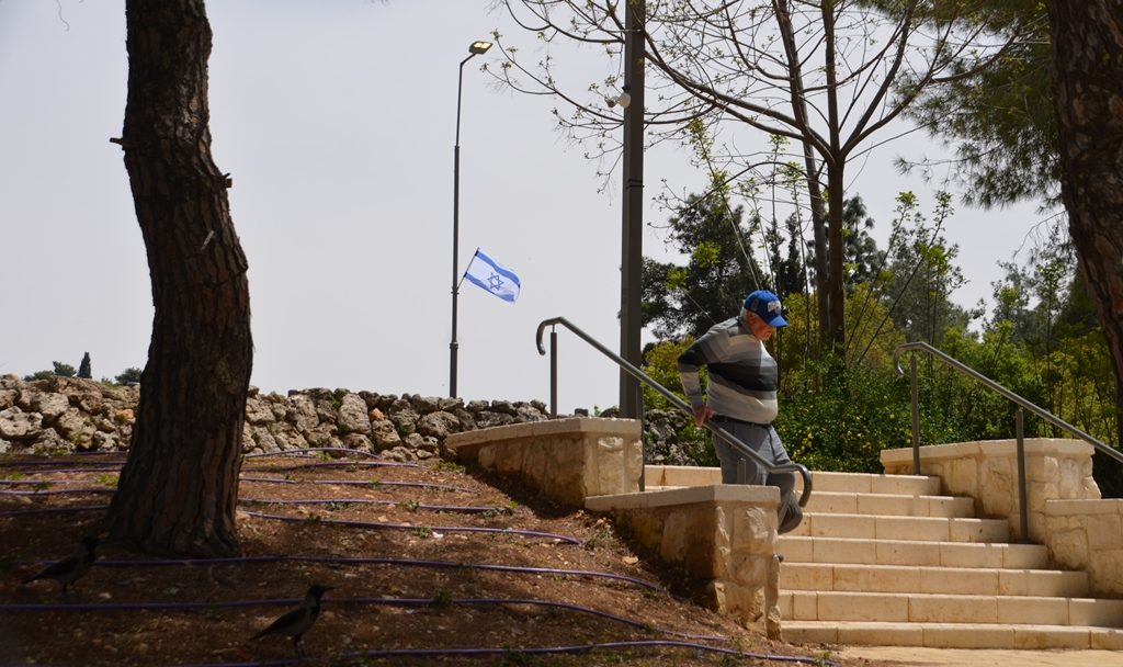 Man walks down stairs to Sacher Park