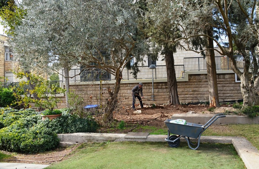 Beit Hanasi community garden established by Nechama Rivlin