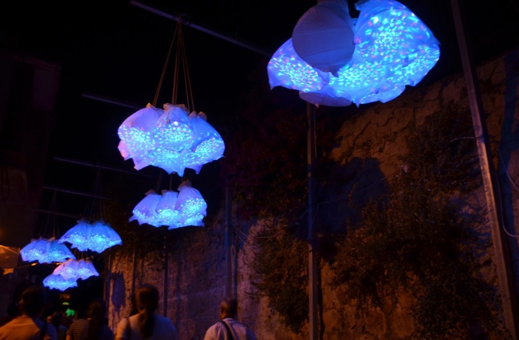 Jerusalem light festival street flowers