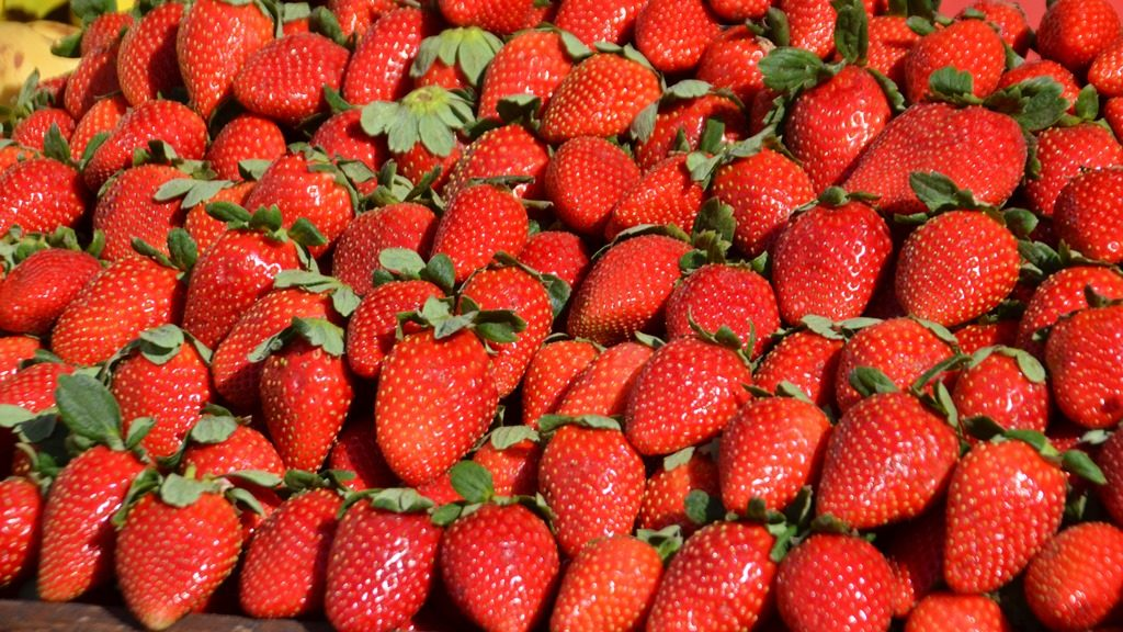 Shuk fresh strawberries in winter Jerusalem