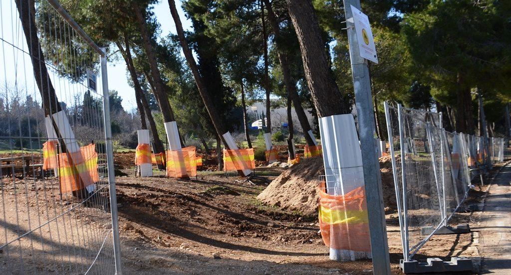 Gan Sacher Park in Jerusalem preservation of trees