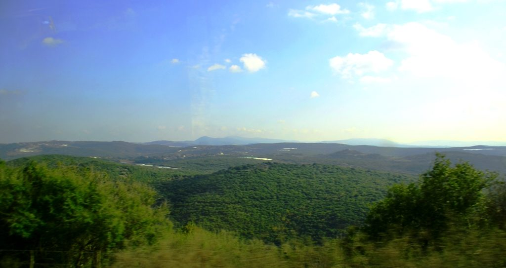 Green Galilee in winter in northern Israel