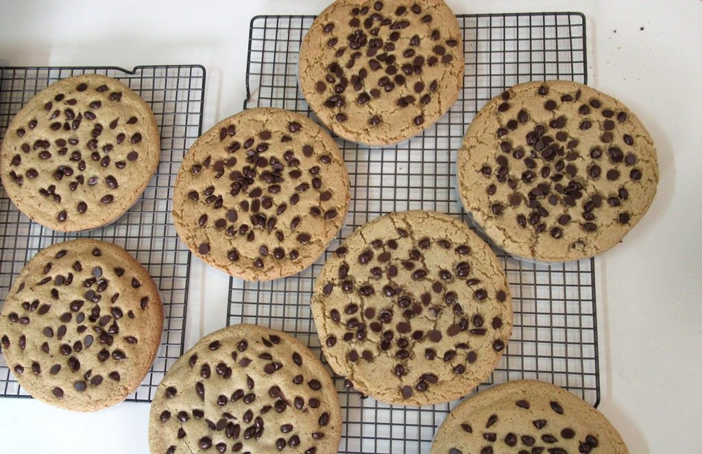 Giant chocolate chip cookies for Purim