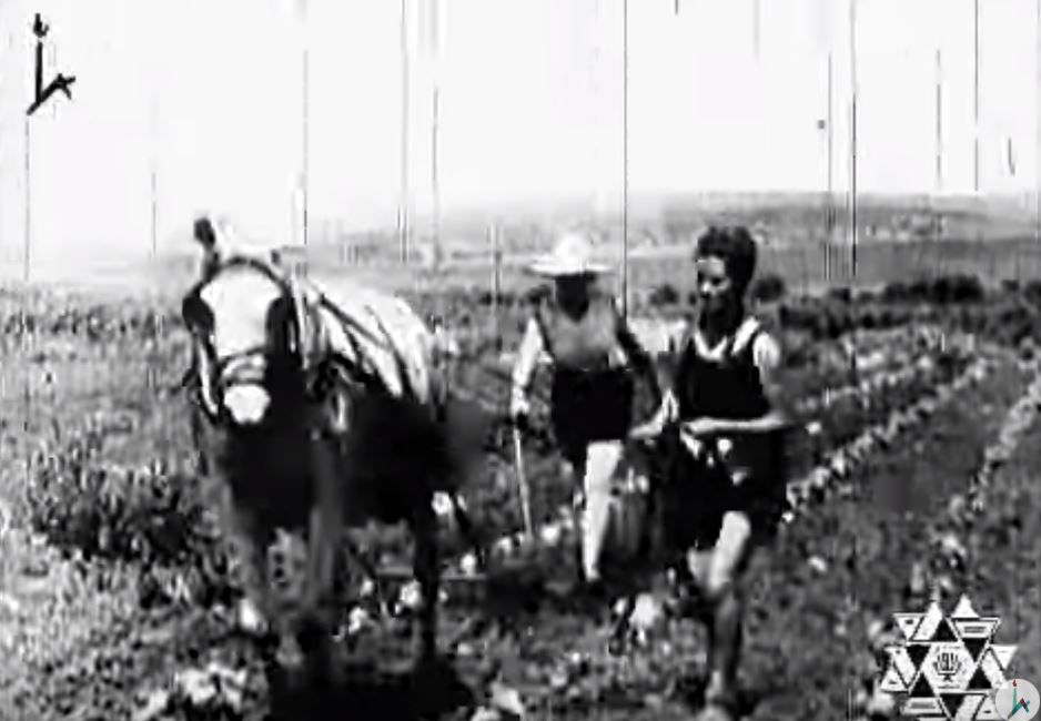 Female agriculture students working in fields before establishment of Israel