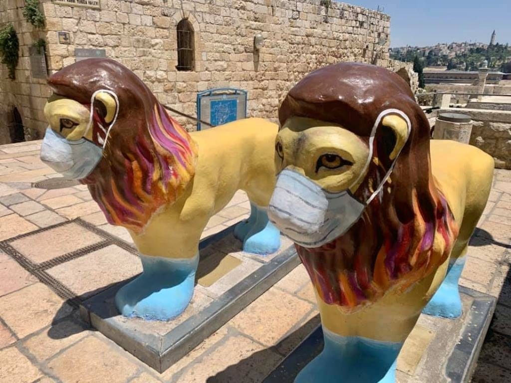 Old City Lions wearing masks