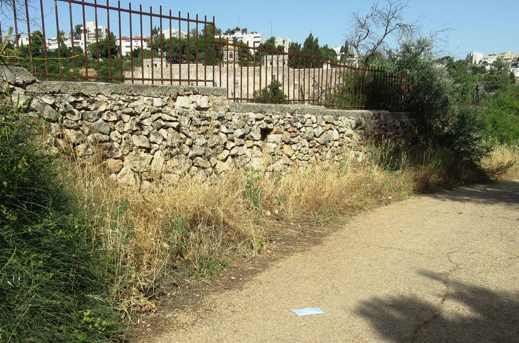 Mask on ground in Jerusalem park path