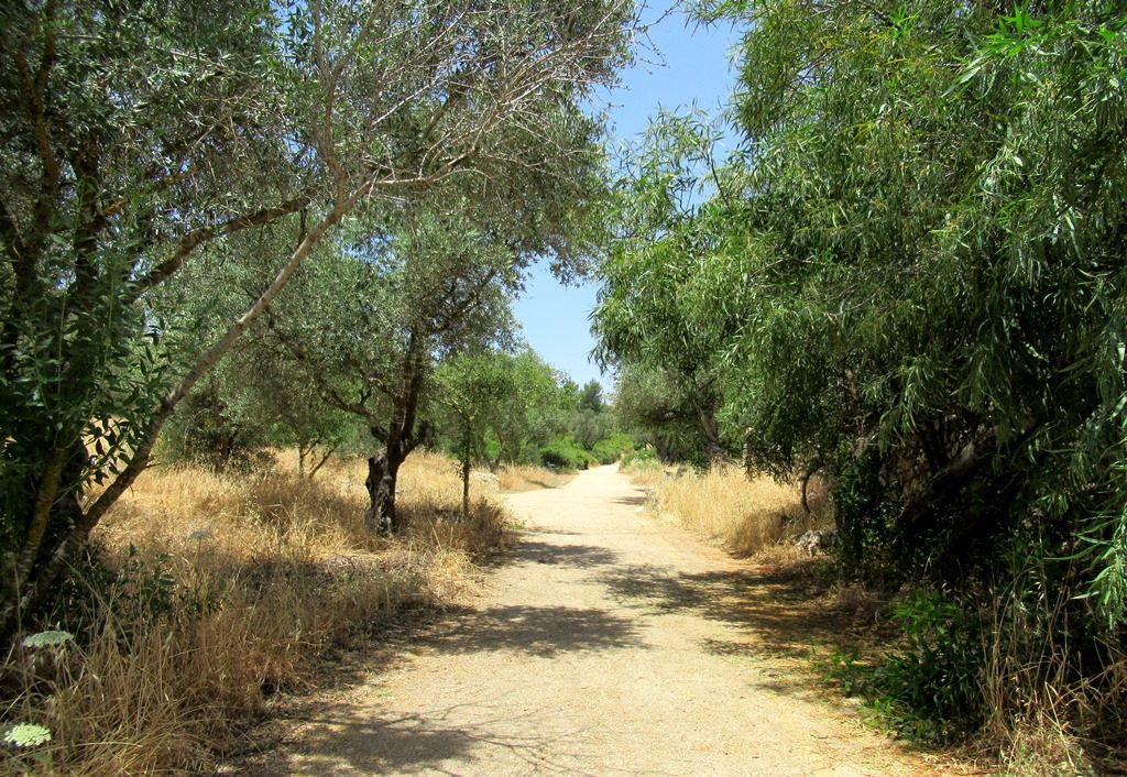 Path in Jerusalem Valley of the Cross