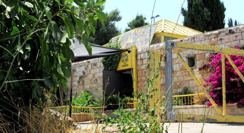 Israeli Scouts Masada center open after COVID-10 closing