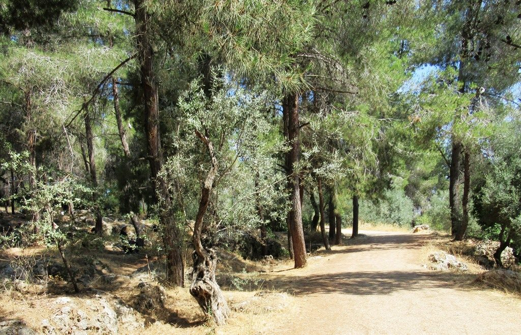 Jerusalem Israel path near Israel Museum