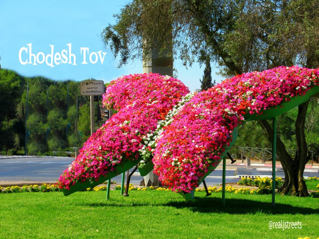 Chodesh tov, Rosh Hodesh Elul poster made from floral butterfly at Sacher Park