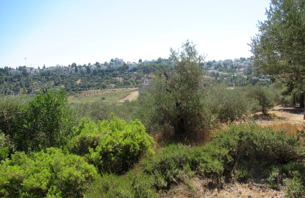 Jerusalem Valley of the Cross