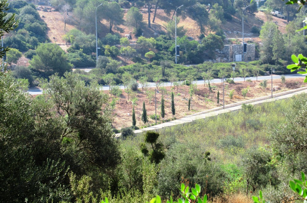 Valley of the Cross in Jerusalem new landscaping
